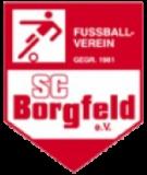 Боргфельд